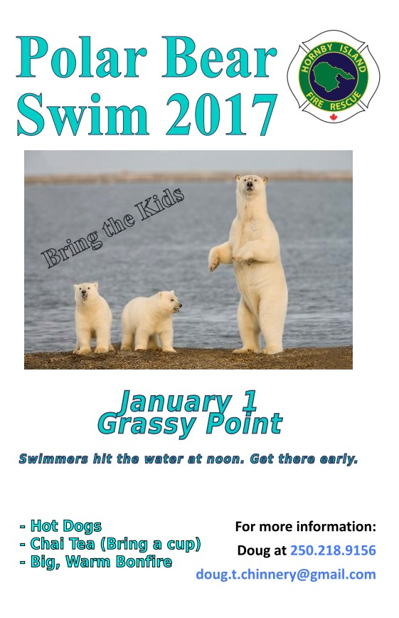 Polar Bear Swim 2017